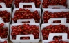 Fruits ~