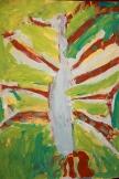 Tree observation Waynflete School